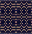 abstract geometric pattern in line style vector image vector image
