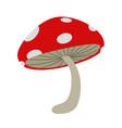 isolated red mushroom vector image