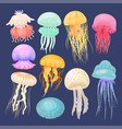 ocean jellyfish bright set on dark blue vector image vector image