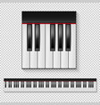 realistic piano keys closeup isolated and vector image vector image