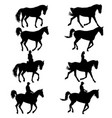 set black silhouette of horse and jockey vector image