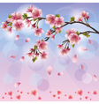 Spring background with sakura blossom Japanese vector image vector image