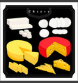 the set cheese vector image