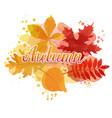 autumn watercolor typography vector image vector image