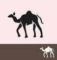 camel symbol vector image vector image