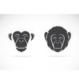 image monkey face vector image