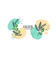 olives emblem for olive oil products vector image vector image