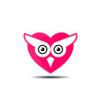 owl bird logo bird head icon education symbol vector image vector image