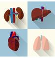 Human organs set vector image