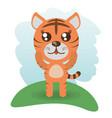 cute tiger animal wildlife vector image vector image