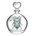 hand drawn engraving sketch may bug beetle in vector image