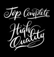 high quality hand written typography vector image vector image