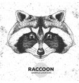 hipster animal raccoon hand drawing muzzle of vector image