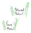 natural products sketch vector image vector image