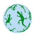 salamanders vector image