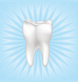 tooth isolated teeth white sign dental medical vector image vector image