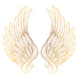 golden wings isolated on white background design vector image vector image