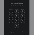 touch id or enter passcode screen vector image