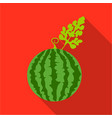 watermelon icon flat single plant icon from the vector image vector image