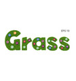 word grass with texture and flowers vector image