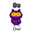 Alphabet O with owl vector image