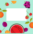 banner with fruits vector image