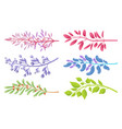 branches with colorful leaves and small berries vector image
