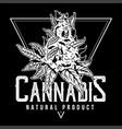 cannabis natural product print vector image