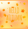 hello autumn card with text vector image