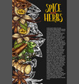 herb and spice chalkboard banner with spicy plant vector image vector image