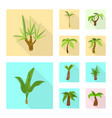 isolated object nature and flora logo set of vector image vector image