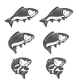 Set of vintage swimming carp fish vector image