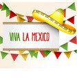 banner viva la mexico - sombrero and party vector image vector image
