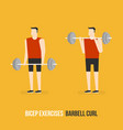 bicep exercises barbell curl vector image