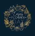 monogram pots with plants enjoy flower day gold vector image