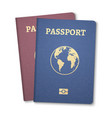 passport document id international pass for vector image vector image