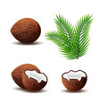 set of coconut icon broken coconut and leaf vector image vector image