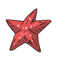 starfish cartoon hand drawn image vector image
