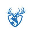 wild deer vintage logo badge vector image vector image