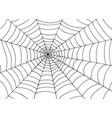spider web background doodle sketch art vector image