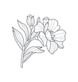Calendula Flower Monochrome Drawing For Coloring vector image vector image