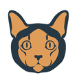 Cat muzzle vector image vector image