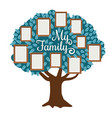 family tree with photo frame isolated on white vector image