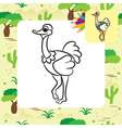 ostrich coloring page vector image vector image