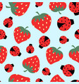 pattern with strawberry and ladybug vector image