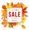 Sale banner with autumn leaves vector image vector image