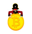 web pirate and bitcoin hacker thief and crypto vector image