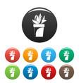 cactus plant pot icons set color vector image