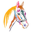 colorful decorative horse 6 vector image vector image