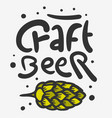 craft beer hand drawn design with beer hop vector image vector image